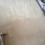 Carpet-Cleaning-Kirkland