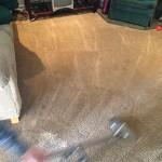 Dirty-Carpet-Cleaned-Kirkland