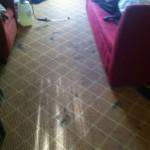 Kirkland-Carpet-Clean-before