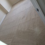 Kirkland-Carpet-Clean-room