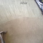 Kirkland-Carpet-Cleaning-Company