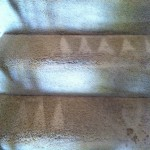 Kirkland-Stairs-Carpet-Cleaning