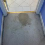 Kirkland-Vomit-1-before-carpet