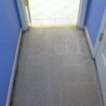 Kirkland-Vomit-2-after-carpet