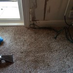 Oil-Stain-Removal-After-Kirkland
